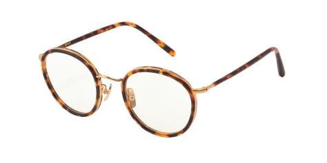evans_02-havana-brown%e3%83%bbgold